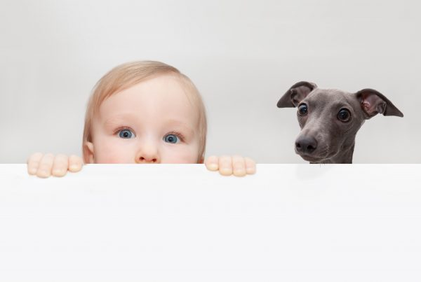 little boy and dog peeping out from hiding